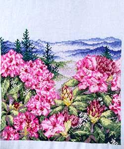 Cranberry Ridge Scene 1