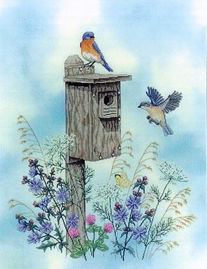 Bluebird Trail, The