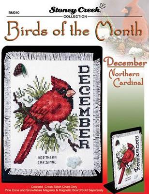 Bird Of The Month-December (Northern Cardinal)