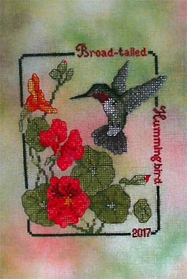 Broad Tailed Hummingbird (2017Commemorative)