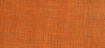 Pumpkin  (32ct)